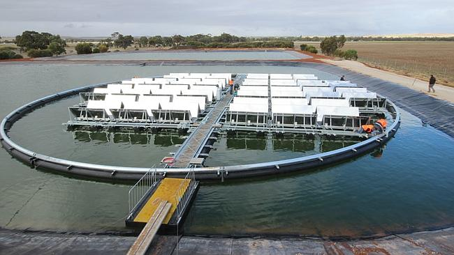 Solar panels floating on a sewerage pond and powering it: South Australia